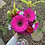 Thumbnail: Pink Passion