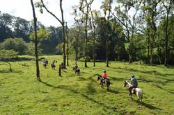 HB Riding (3)