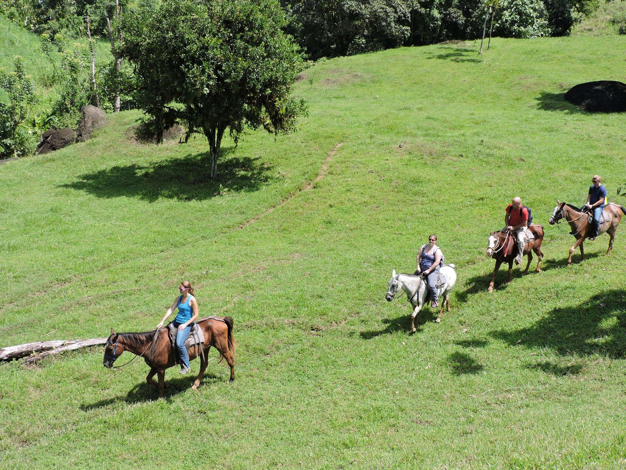 HB Riding (1)