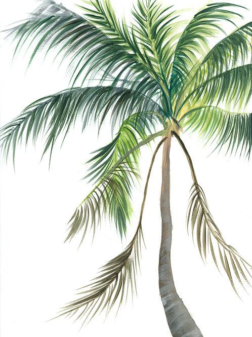 Absent Palm Print