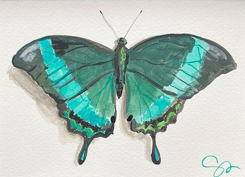 5x7 original painting (Emerald Swallowtail)