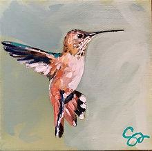 Auburn Hummingbird.jpg