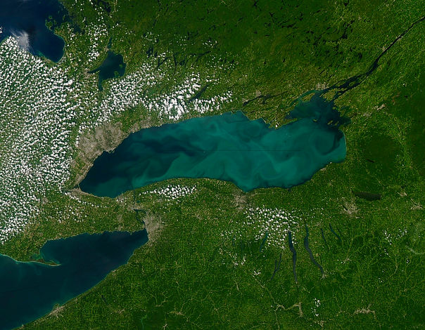 Phytoplankton_bloom_in_Lake_Ontario_(967