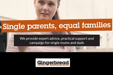 Nigel Purkis' presentation | conference on one parent families 2007