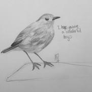 bird smile.jpg