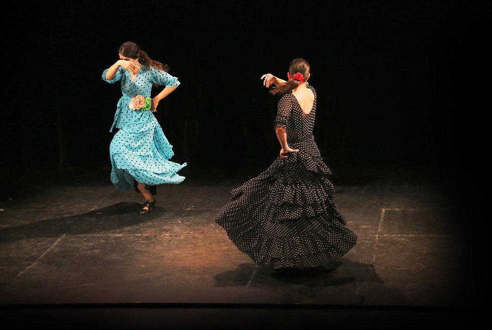 flamenco.jpeg