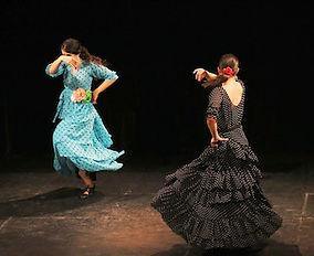 flamenco-small-2.jpeg