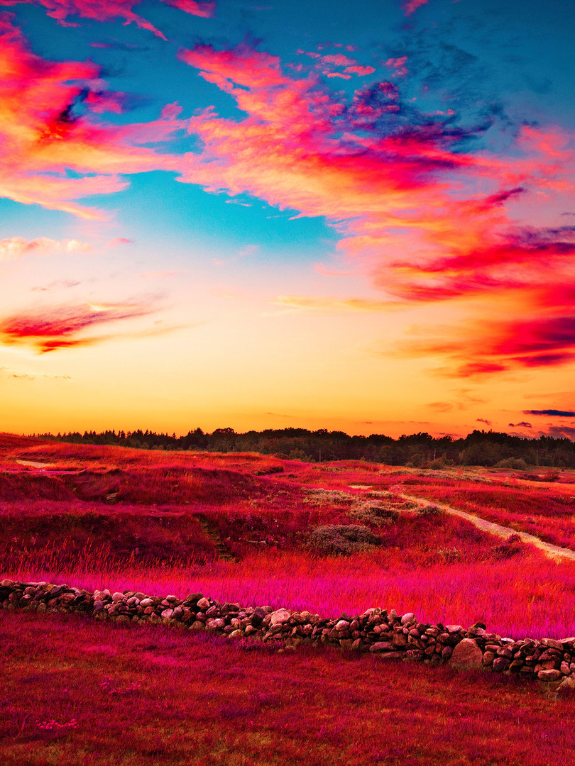 Sunset_1 copy.jpg