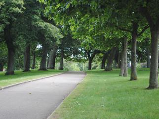 Why We Love Devonport Park