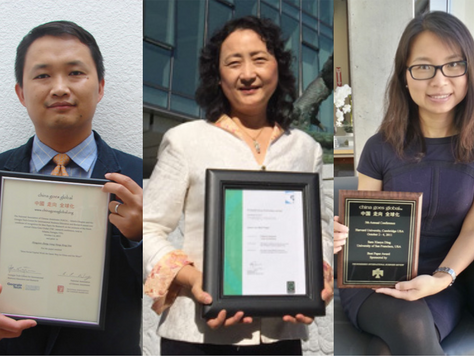 "Three USF Professors Win ""China Goes Global"" Best Paper Awards"