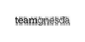 teamgnesda logo.png