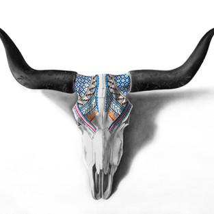 Cráneo mexicanos Vol.1