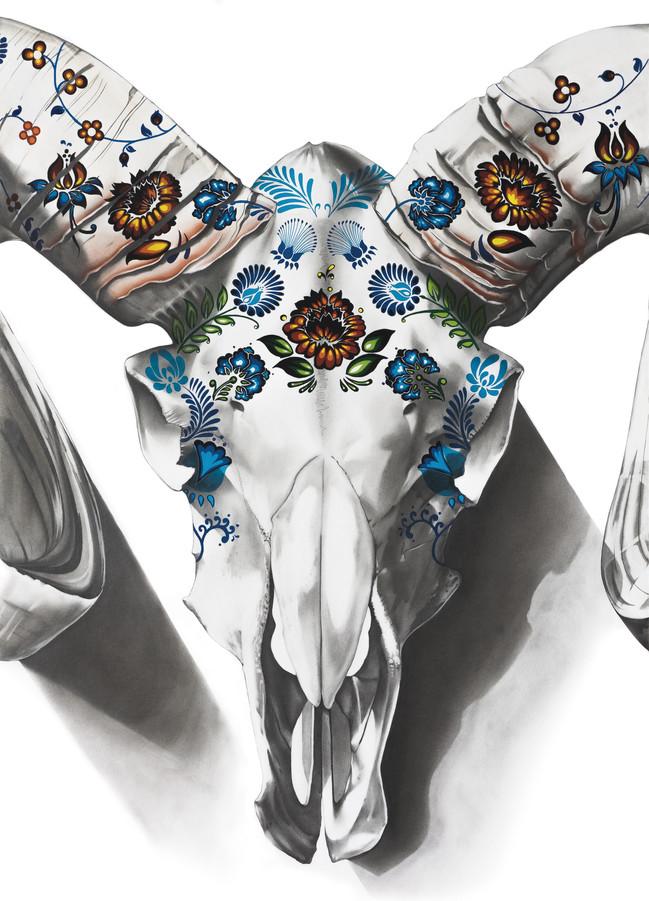 Cráneo mexicano Vol. 3