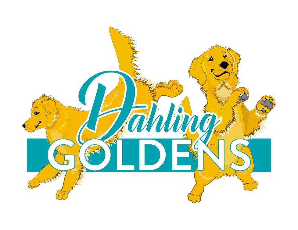 Dahling Goldens Final Logo-01.png