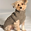 Thumbnail: Classic Knit Sweater- Grey