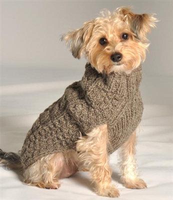 ChillyDog Sweater - Brown