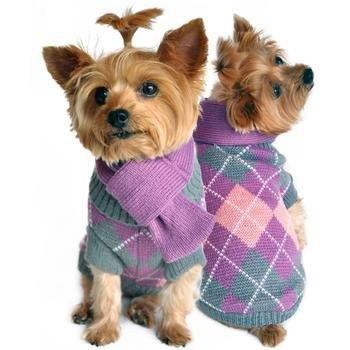Argyle Sweater with Scarf