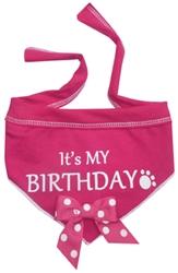Its My Birthday Scarf - Pink
