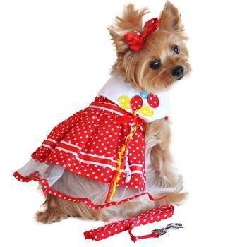 Red Polka Dot Balloon Dress w/ Leash