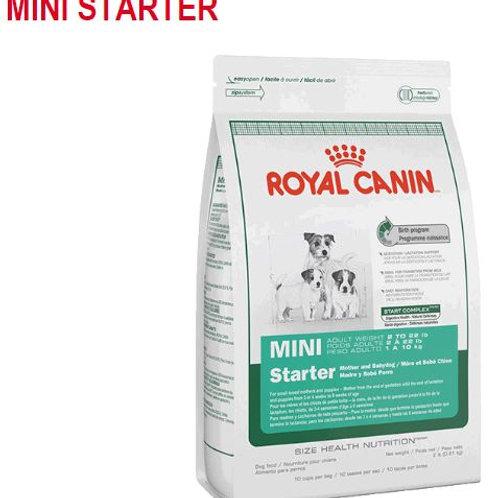 Mini starter