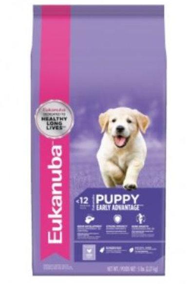 Puppy medium breed