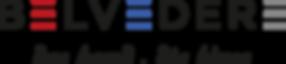 Belvedere_Das_Hemd_Die_Bluse_Logo.png