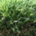 The Boundary Artifical Grass