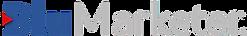 Logo BluMarketer PNG