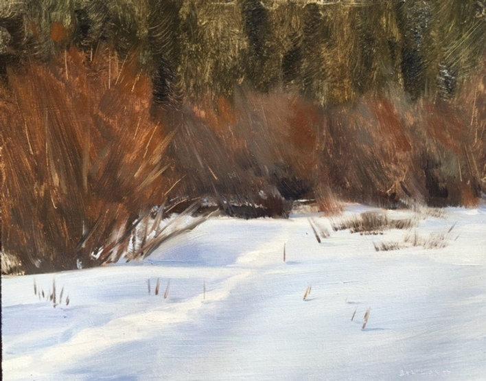 multi-colour oil painting titled Medicine Lake Schrubs by artist  jason bartziokas