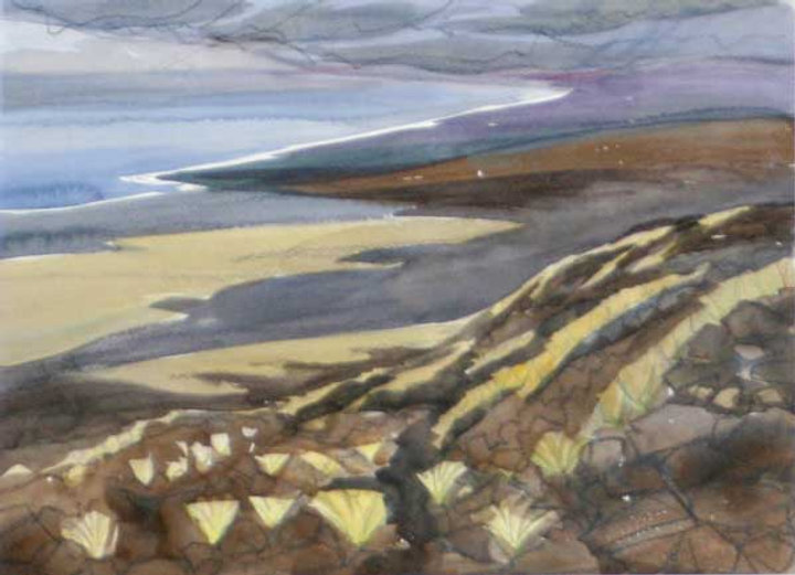 multi-colour watercolour painting titled Lava Grass Tufts 1993 by artist doris mccarthy.
