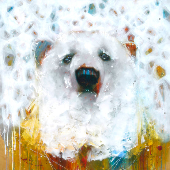 Multi-colour arcylic painting of a bear titled Frost by artist fran alexander