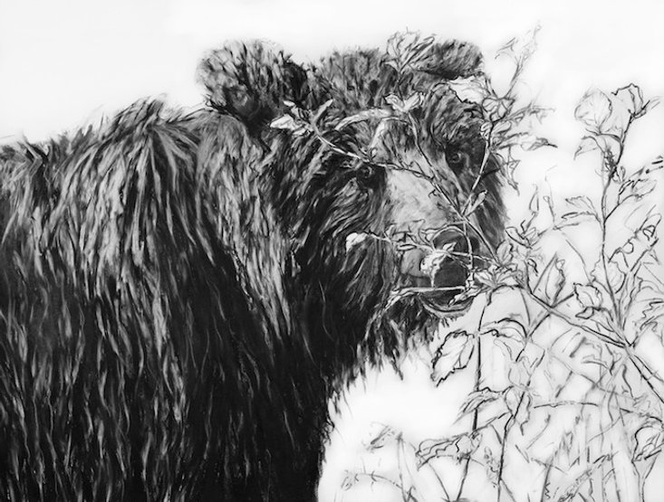 black and white charcoal painting titled Looking Back by artist maureen enns
