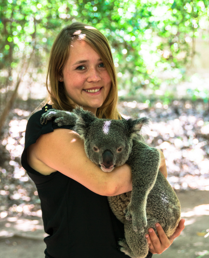Let´s kuddle a Koala – Magnetic Island