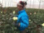 ethiopian worker
