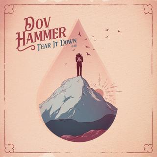 DOV HAMMER / SINGEL COVER