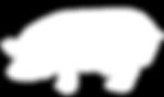 YBV_GinPig_PigMark_textured reveresed(20