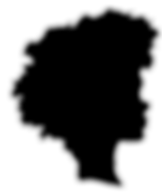 BFABW Logo_edited.png