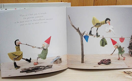 Gnome, picture book