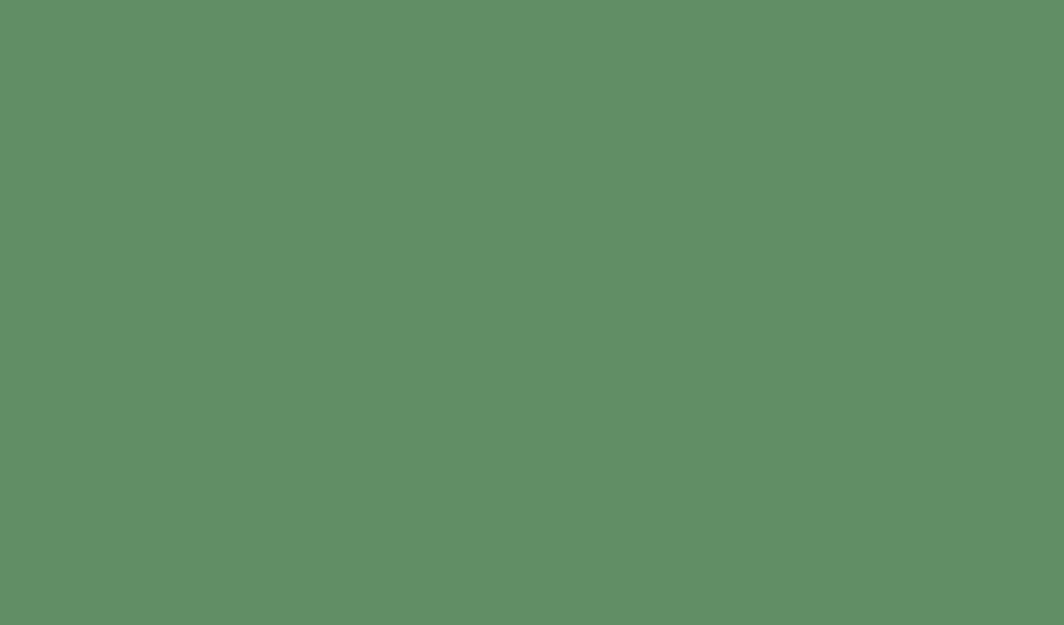 Dk green speckled Bkgd.png