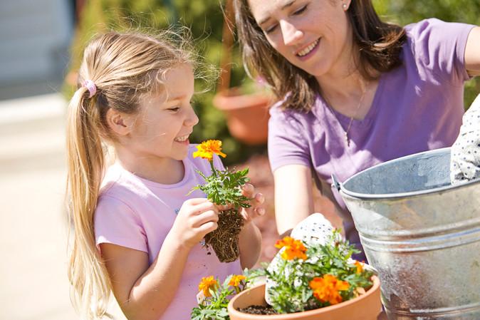 Summer Gardening Tips