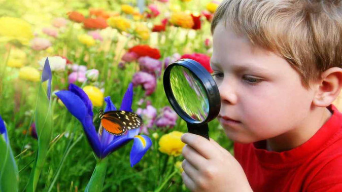 10 Fun Ways to Entertain Your Kids in the Garden