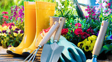 Spring Garden Maintenance Tips