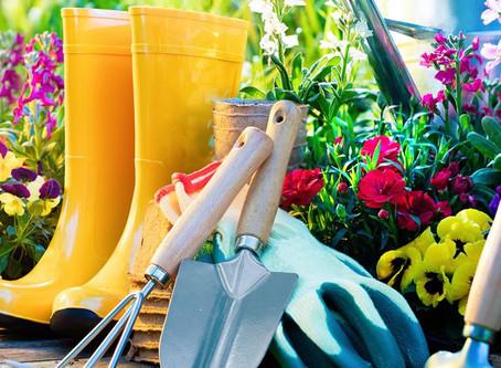 Spring Garden Maintenance Tips