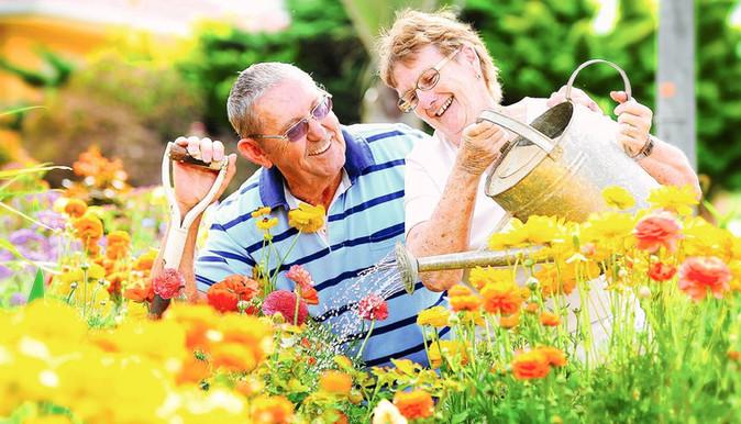 Tips to Prepare Your Garden for Spring