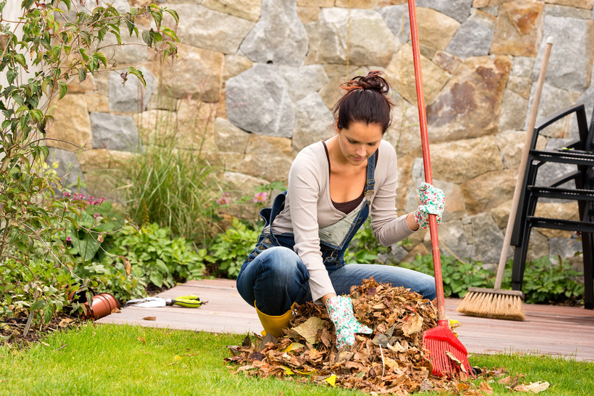 Tips To Prepare Your Garden For Winter