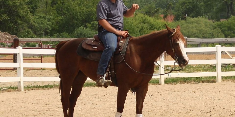 Reining Practice and Maneuvers Clinic