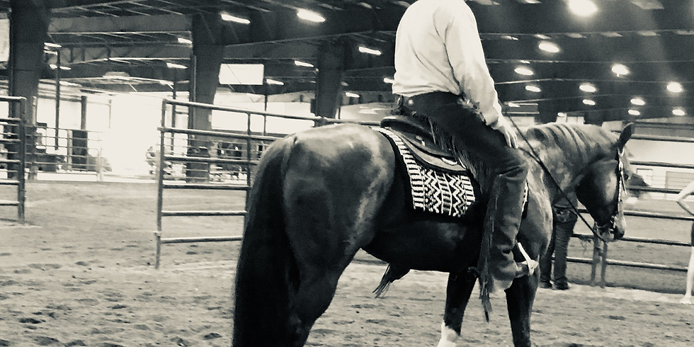 Form to Function Reining Clinic
