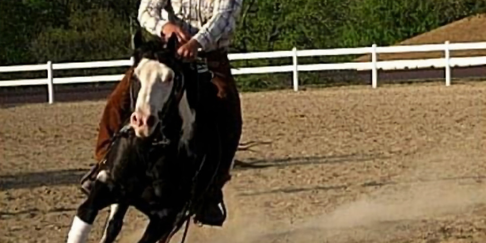 Intro to Reining with a Focus on Guiding