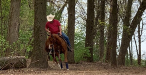 Refocusing When My Horse Says NO.