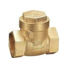 brass 20mm swing check valve
